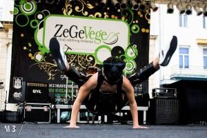 Zege_2014_88